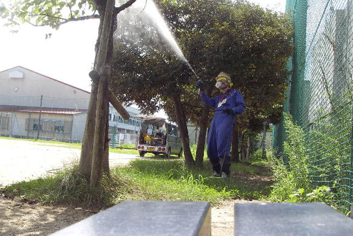樹木害虫対策